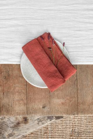 Clay linen napkin set of 2